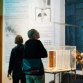 TRANSPARENT BEEHIVE  at BEAF BRUSSELS -  festival + exhibition