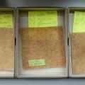 tests with Psyllium ovata