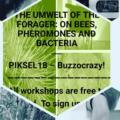 2018 - PIKSEL18, Bergen (Norway)